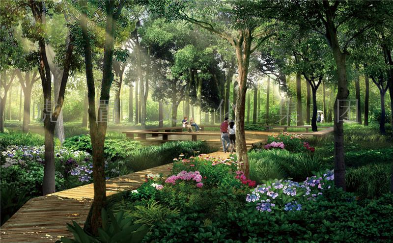 湿地公园景观3D效果图